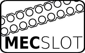 MEC-SlotvYVDtTNH4Qt4Y